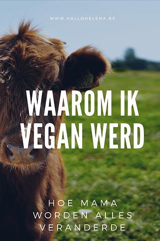 Geen dierlijke producten eten lijkt voor veel mensen onhaalbaar. Waarom zou je het ook doen? Niks lekkerder dan een boke met jonge kaas, toch? True. Maar achter lekker gaat heel wat leed schuil. Voor wie het interesseert: dit is waarom ik plantaardig ging eten en mezelf voorzichtig veganist noem.
